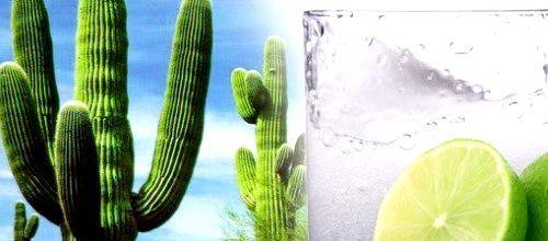Як правильно пити текілу