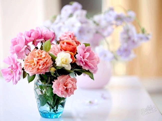 Як продовжити життя зрізаною троянді