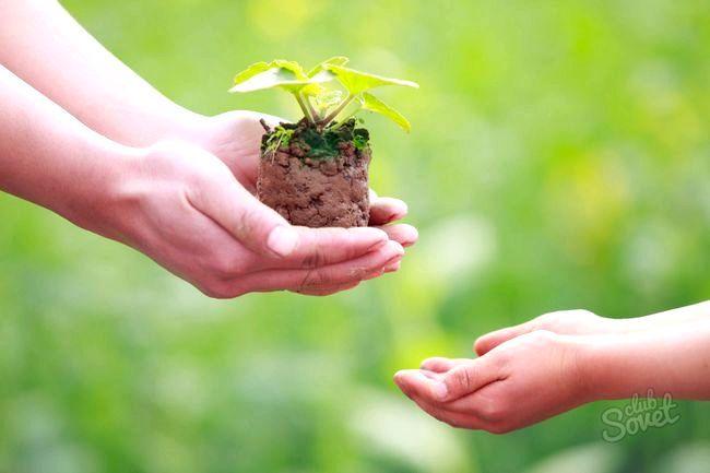 Як створити благодійний фонд