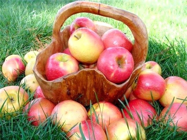 Як варити яблучний компот
