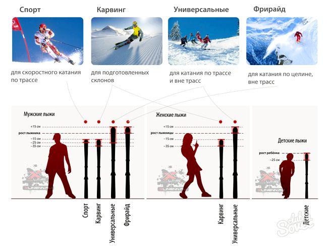 Як вибрати лижі