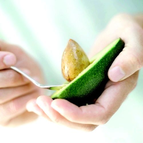 Як виростити авокадо з кісточки