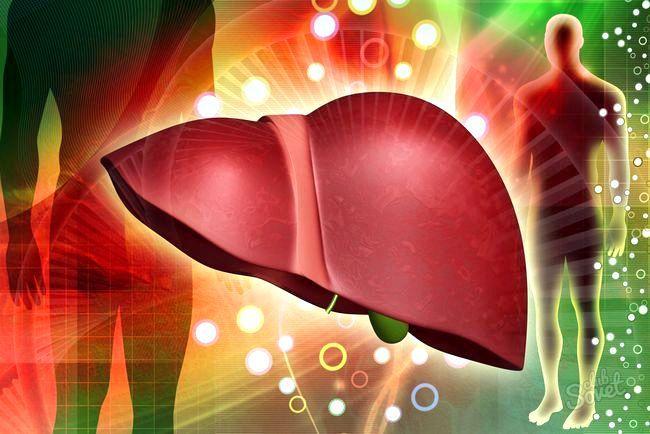 Червоний лук для лікування печінки